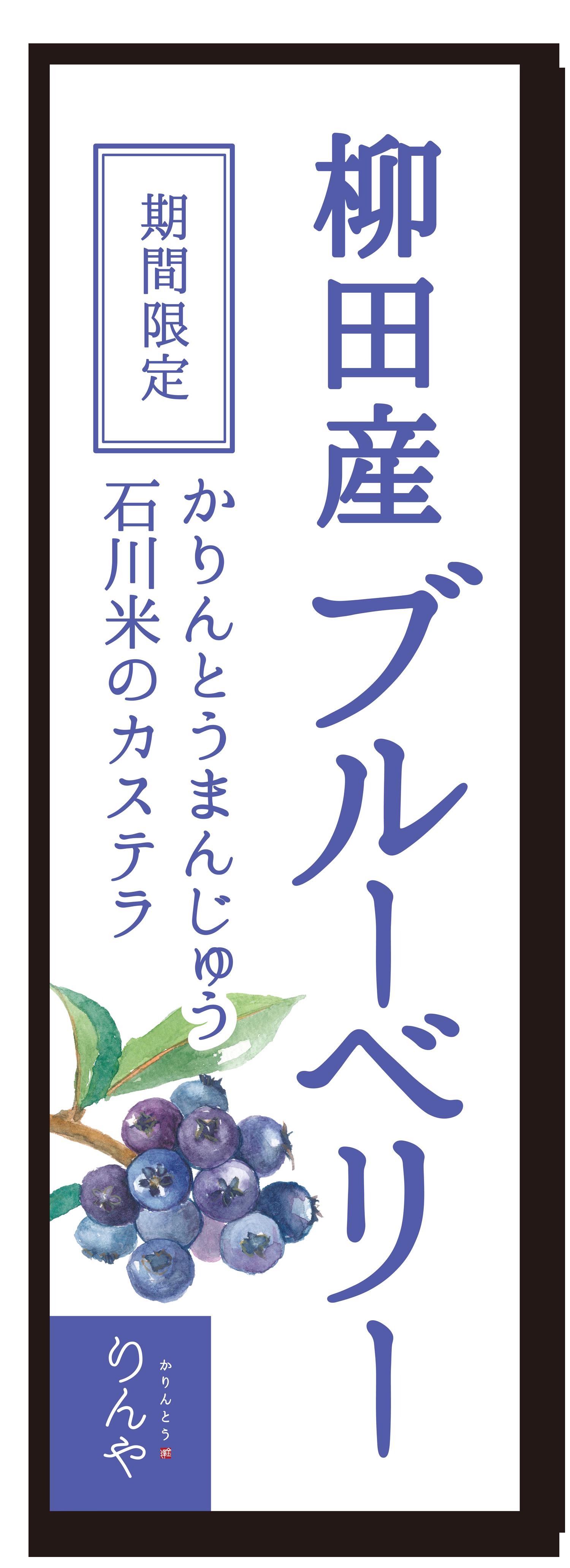 柳田産ブルーベリー